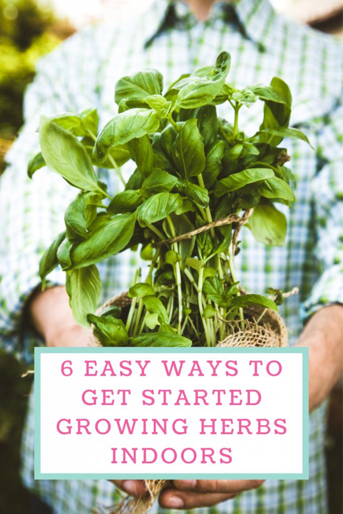 6 Easy ways to get started growing herbs indoors